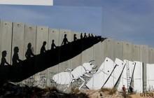 palestina - erica il cane