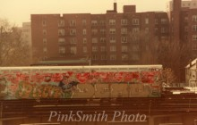Lady Pink treno nyc