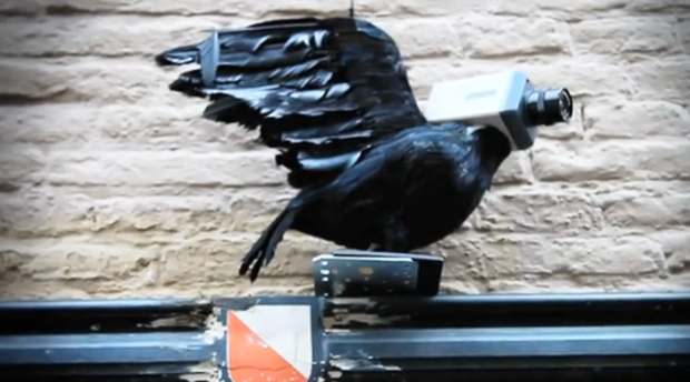 cyber-uccelli-londra