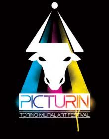 picturin festival torino 2010