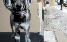 Boxi Germania stencil street art graffiti
